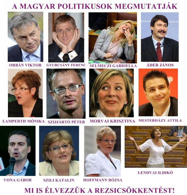 rezsicsökkentés politikusokkal (rezsicsökkentés, )