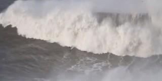 szörf (szörf)