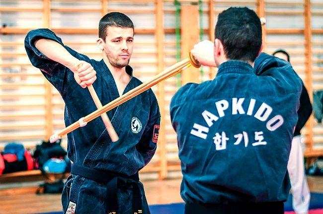 Hapkido2 (hapkido, harcművészet, )