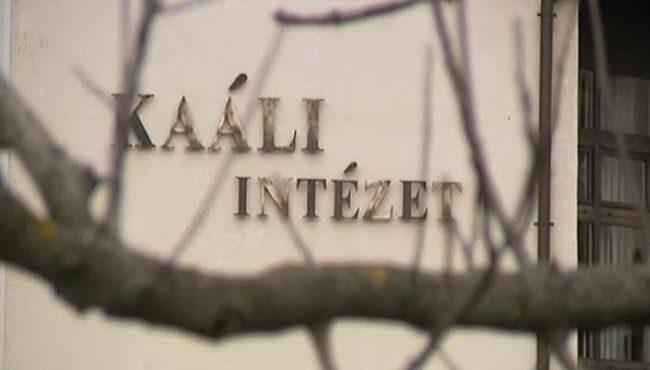 Kaáli intézet (kaáli intézet, meddőség)