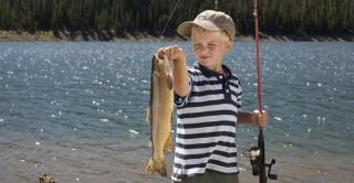 hal (horgász, halak, pecázás, )