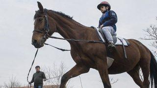 lovaglás (lovaglás)