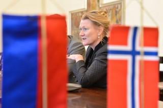 norvég nagykövet (norvég nagykövet, tove skarstein)