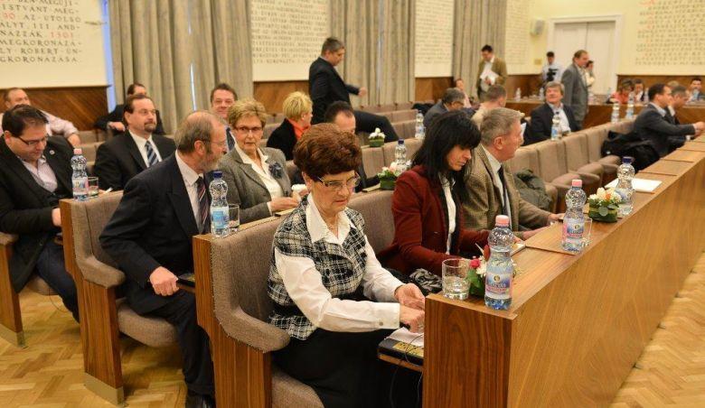 székesfehérvári közgyűlés (székesfehérvári közgyűlés)