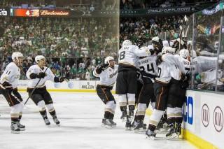 Anaheim Ducks (anaheim ducks, )