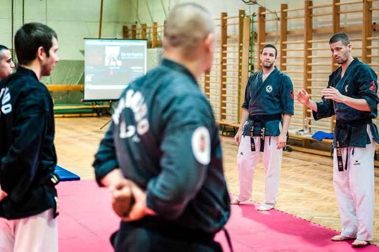 Hapkido Máté testvérek (hapkido, harcművészet, máté testvérek, )