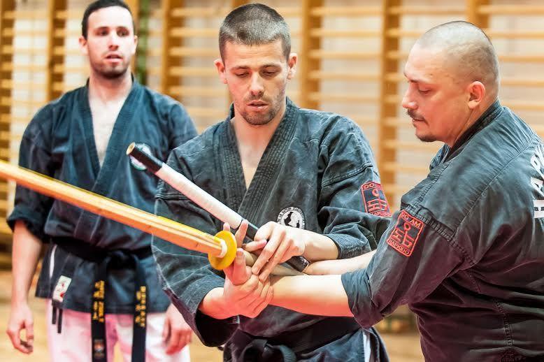 Hapkido3 Máté testvérek (hapkido, harcművészet, máté testvérek, )