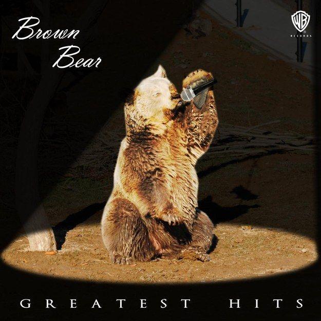 Megasztár maci (medve, ének, cd)