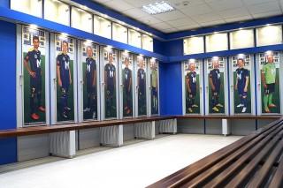 Puskás Akadémia (puskás akadémia, )