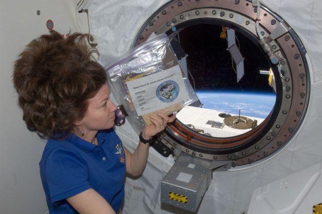 Űrmagvak az űrállomáson (űrmagvak, )