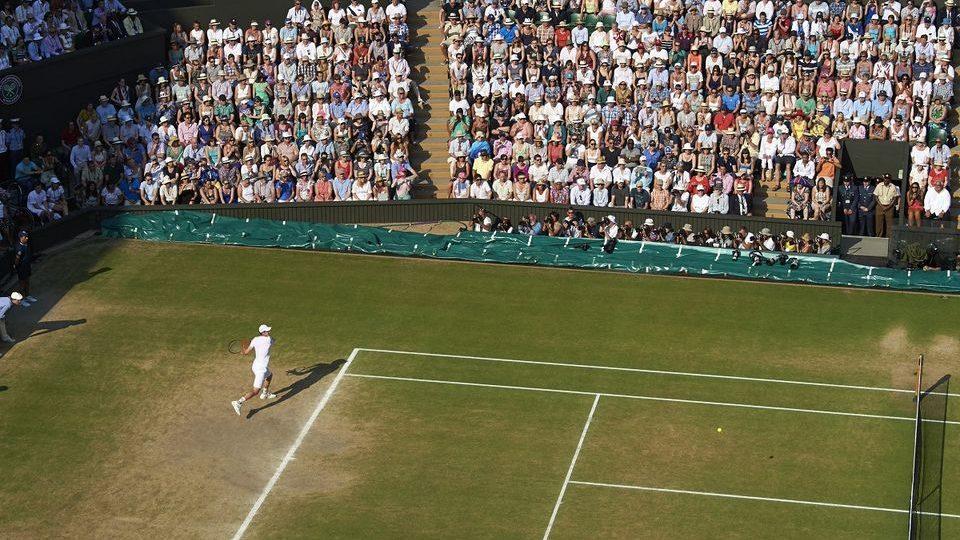 Wimbledon (wimbledon, )