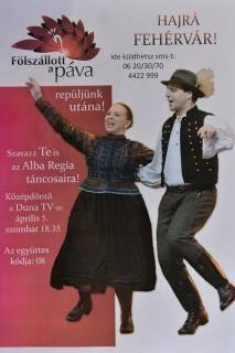 alba regia (alba regia)