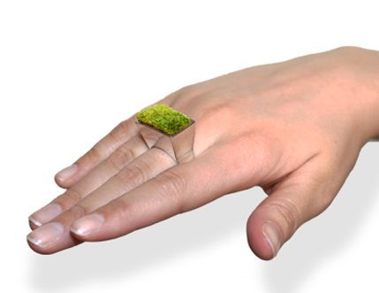 gyűrű (gyűrű, )