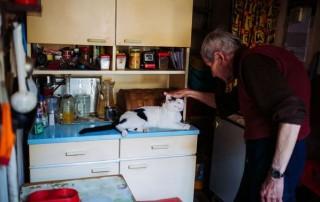 macskás ember (macska, józsi bácsi)