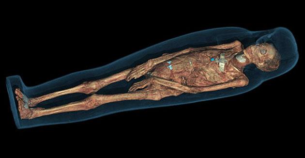 múmia (múmia, )