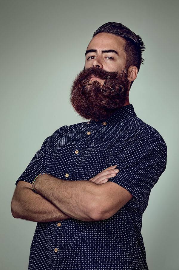 hipszerszakáll 1 (szakáll, rágcsáló, hipszter, )