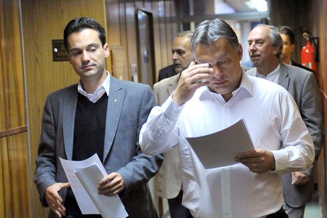 Havasi Bertalan (Havasi Bertalan, Orbán Viktor)