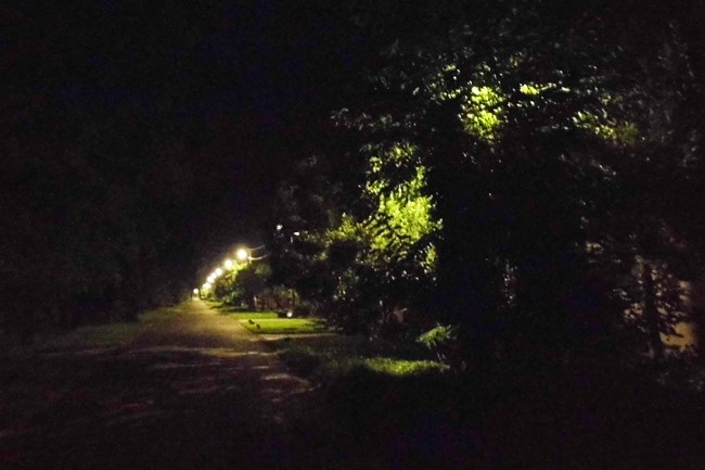lamp2(650x433).jpg (lamp)