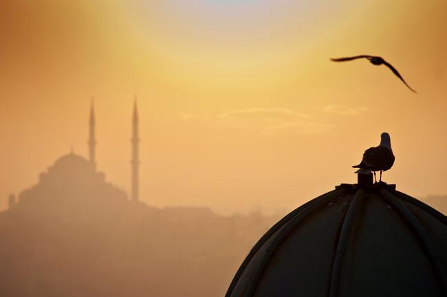 muszlim templom (muszlim templom, vallás, hit, muszlim)