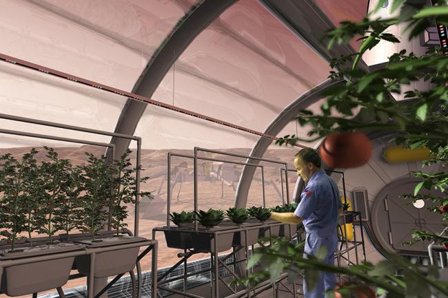 Mars növények (Mars növények, növénytermesztés, Mars bolygó, )