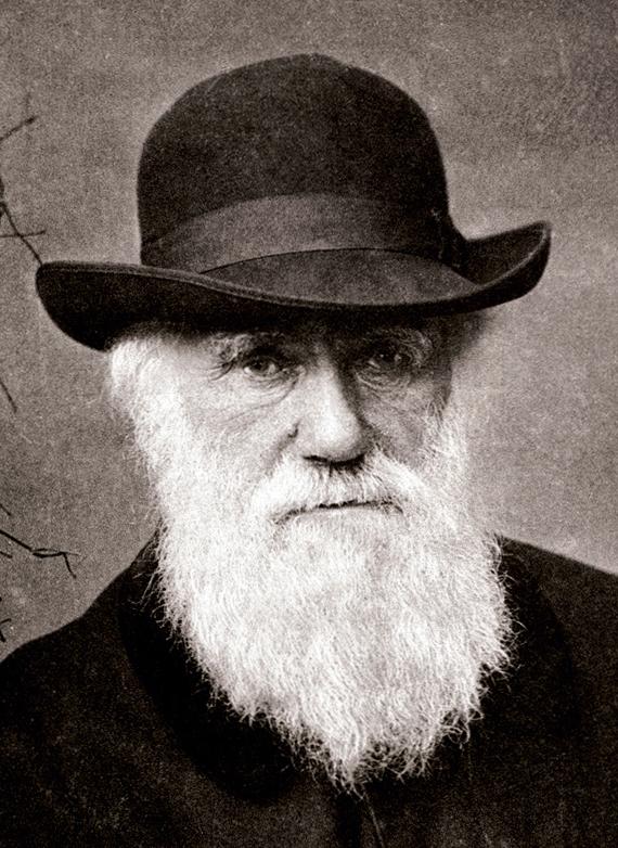 darwin (charles darwin, )