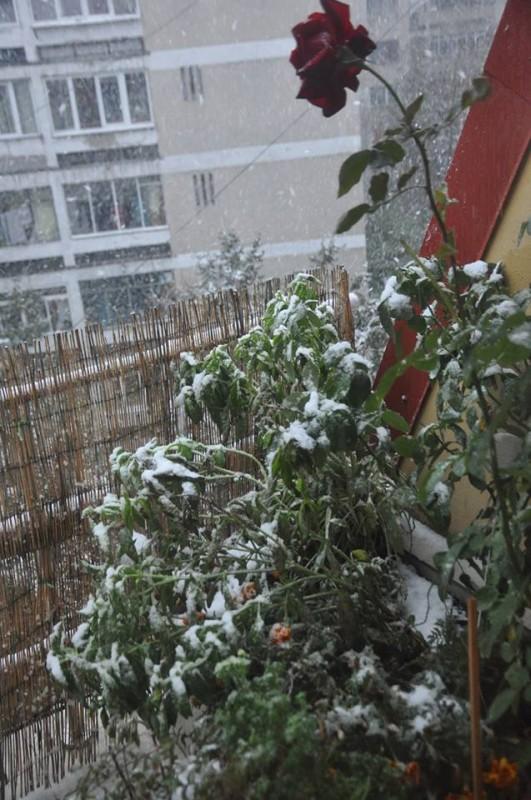 havazás Bukarestben októberben (havazás, )