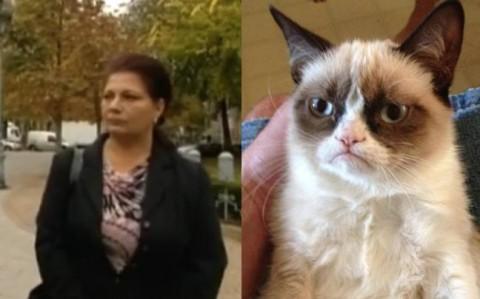 Vidamém - Grumpy (vida ildikó, mém, grumpy cat, )