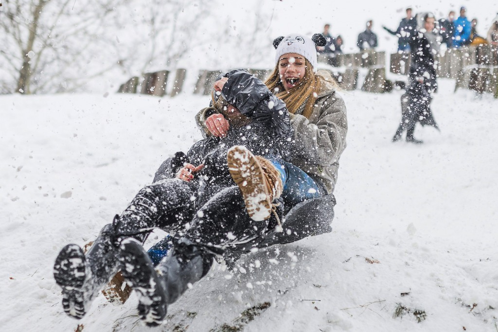 szánkó (szánkó, havazás, hó, szánkózás, december, Karácsony, tél, )