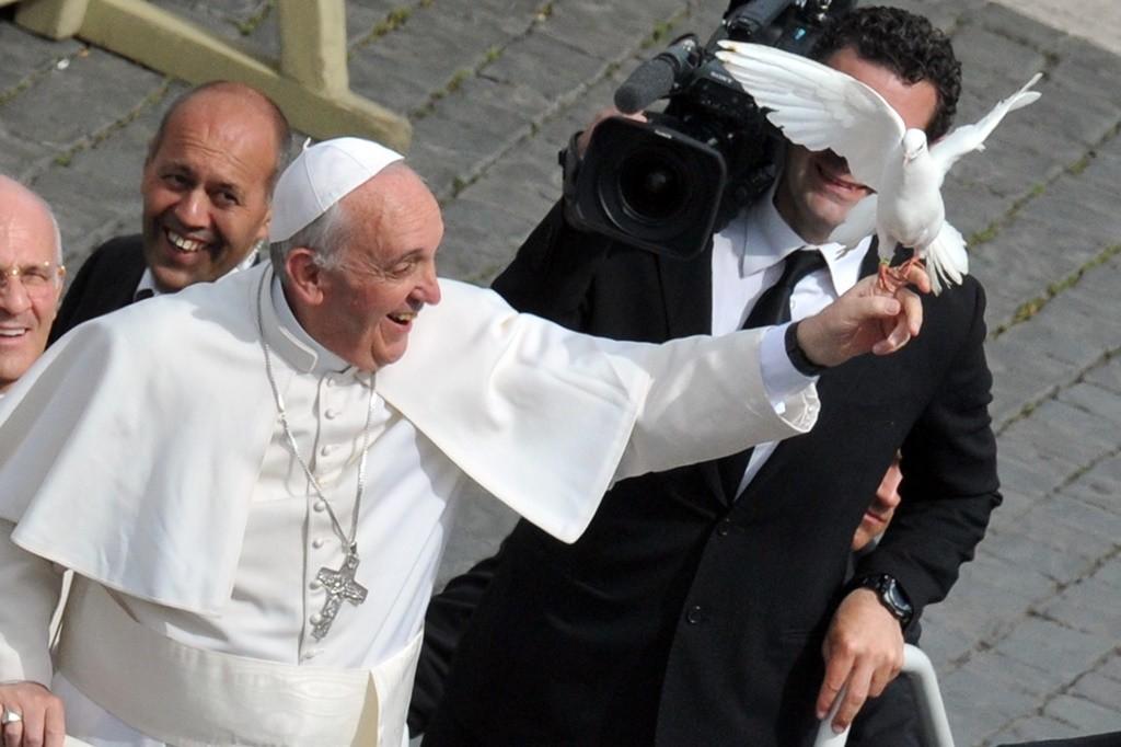 Ferenc pápa galambbal (pápa, ferenc pápa, )