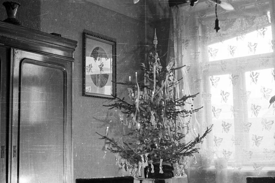 Karácsony 1956 (Karácsony 1956, fenyőünnep, Fortepan )