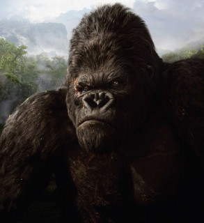 King Kong (king kong, )