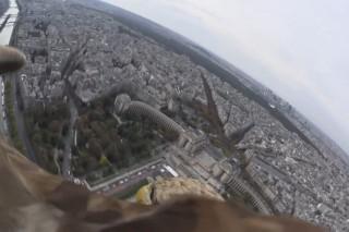 Madárlátta Párizs (Párizs, )