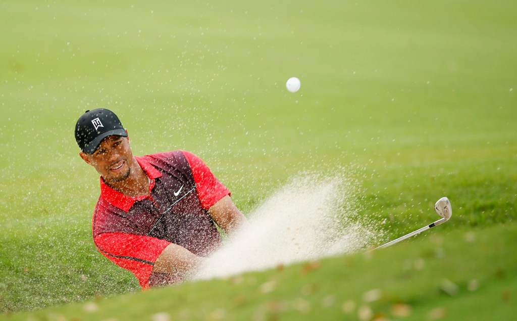 Tiger Woods (tiger woods, )