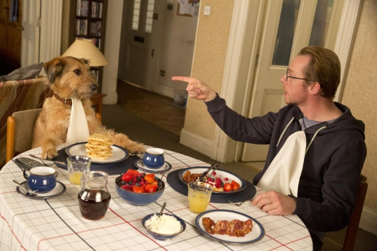 absolutely anything (absolutely anything)