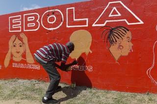 ebola(650x433).jpg (ebola, )