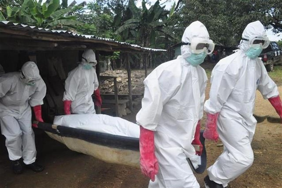 ebola(1)(960x640).jpg (ebola)
