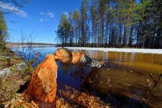 finn táj (finnország, )