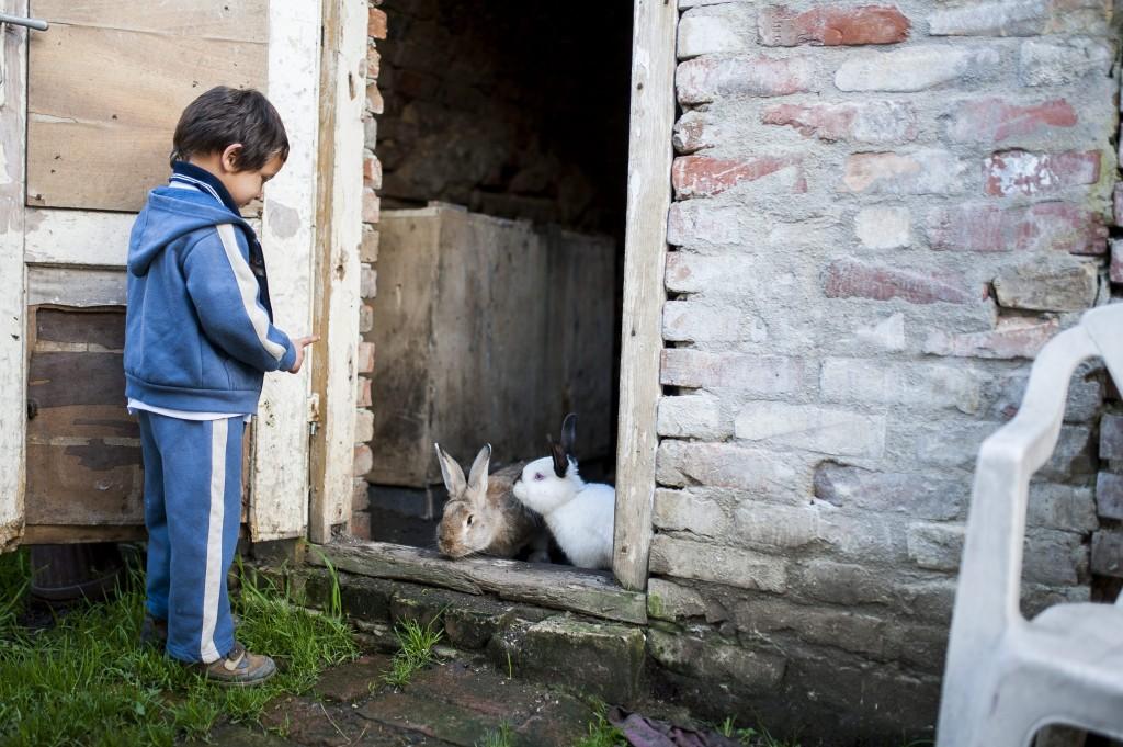 szegény gyermek (szegénység)