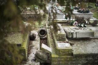 temető sír (TEMETŐ, SÍRRONGÁLÁS)