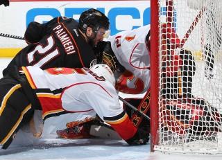 Calgary Flames (calgary flames, anaheim ducks, )