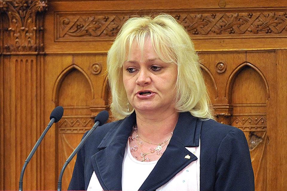 Menczer Erzsébet (Menczer Erzsébet, Fidesz képviselő)