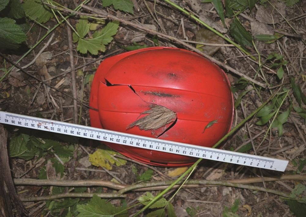 favágó-baleset (munkavédelmi sisak)