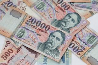 forint(960x640).jpg (forint)