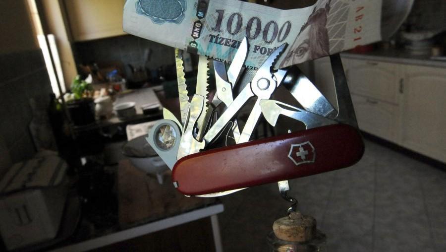 hitel (hitel, pénz, forint, bankjegy, svájci frank, bicska, )