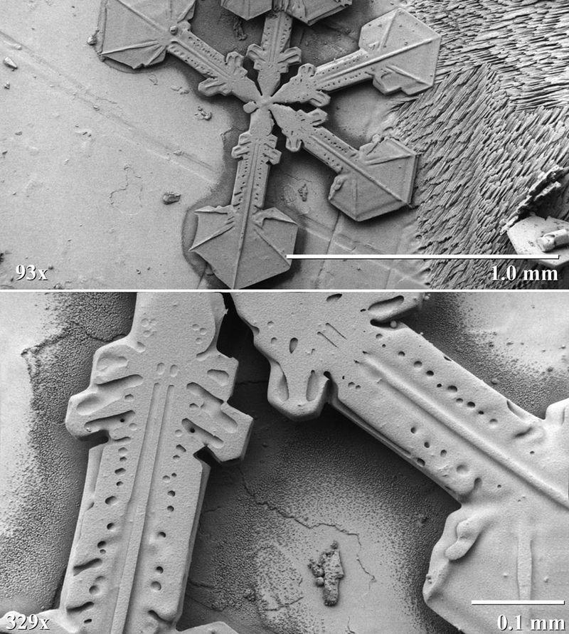 hó elektronmikroszkóp alatt 2 (hó, elektronmikroszkóp, )