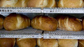 kenyér (kenyér)