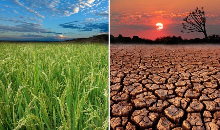klímaváltozás (klímaváltozás, globális felmelegedés)