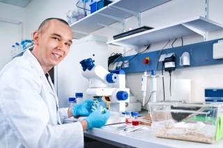 laboratórium egérrel (laboratórium, egér, fehér egér)