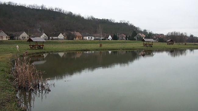 tó (tó)