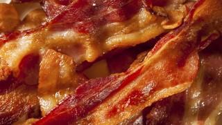 Bacon (bacon, szalonna, )